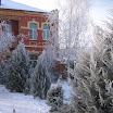 снежная зима 08-09 года (4).JPG