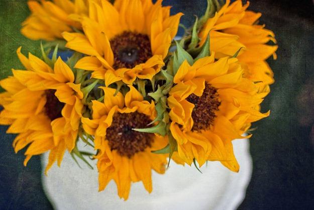 summersunflowers3_edited-1