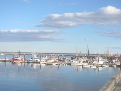 11.2011 boats in Provincetown harbor