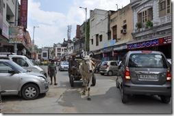 Delhi 2 001 scene de rue