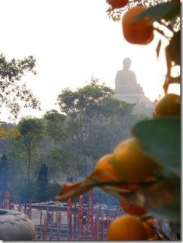 Tian_Tan_Buddha_Hong_Kong