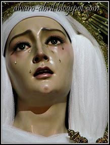 rosario-del-mar-almeria-inmaculada-2011-alvaro-abril-(19).jpg