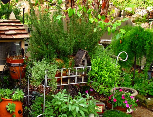 garden 8_edited