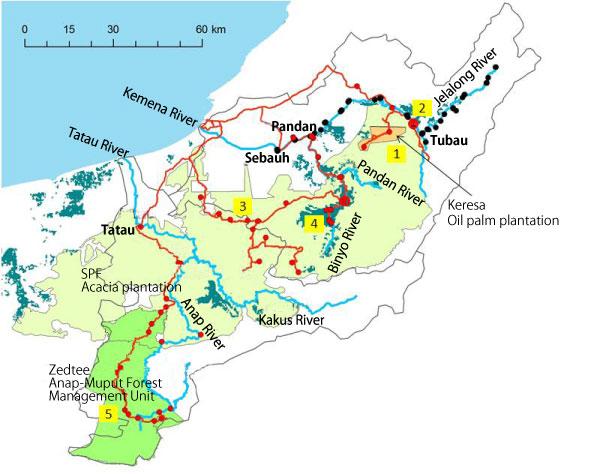 図3 2010年(黒点)、2011年(赤点)の河川水採水地点  赤線は2011年の調査経路。黄色の数字は写真の番号と対応する。青緑色の部分は泥炭湿地林を示す。/ Figure 3 Sampling points on August 2010 (black), and August 2011 (red) . Red lines represent truck of the survey on 2011. Yellow numbers denote photograph numbers.