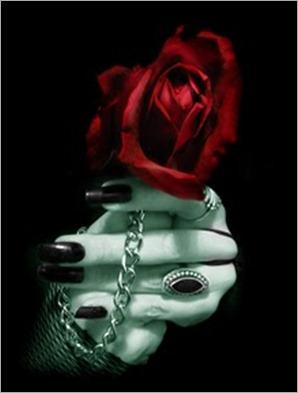 rosa.gótica - copia