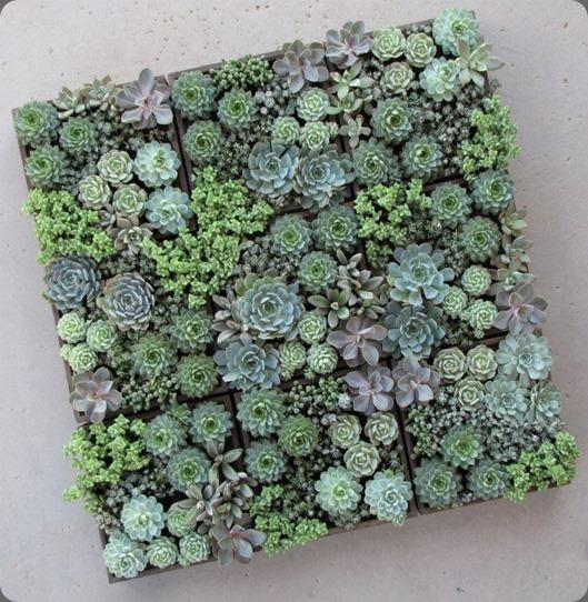 548994_485193488177566_1992360008_n floral verde