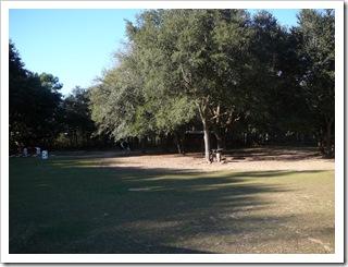 Backyard of the ranch