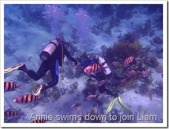 Exuma Sea Park Dive 123