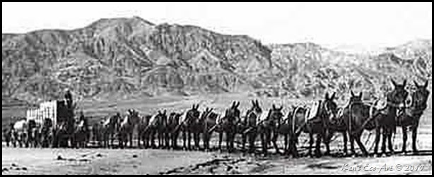 20_Mule_Team_in_Death_Valley