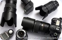 digital-photography-jpeg-digital-cameras-digital-photos-blue-palm.blogspot.com