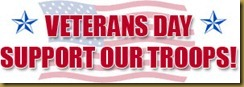 1-veterans-day-support