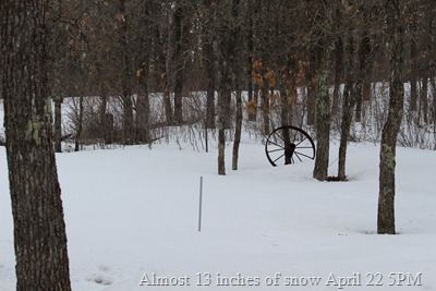 Almost 13 inches of snow April 22