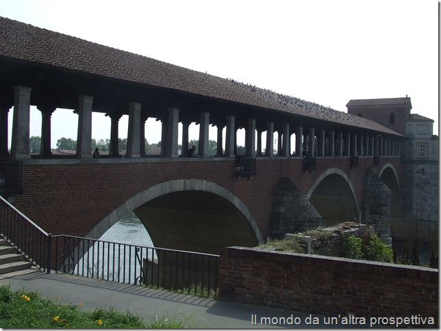 Pavia - ponte