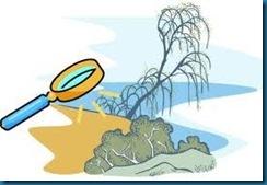 soil test dead plant