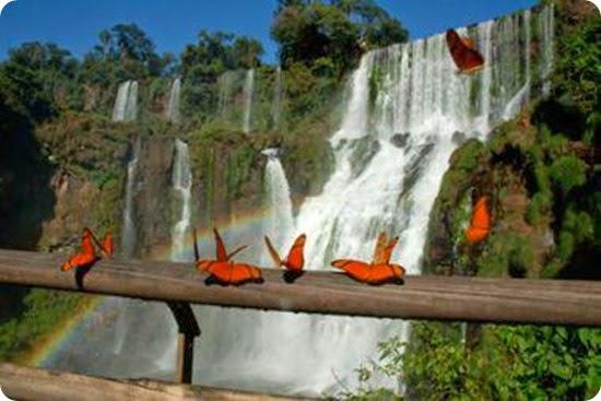 parque nacional iguazu3