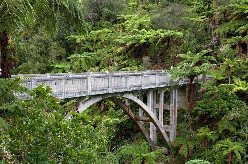 whanganui-bridge-nowhere-2