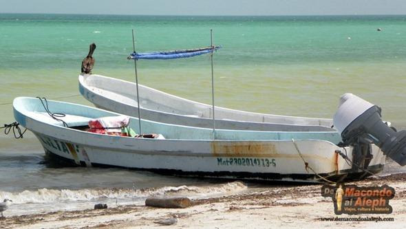 Viaje Mexico Isla Holbox 2