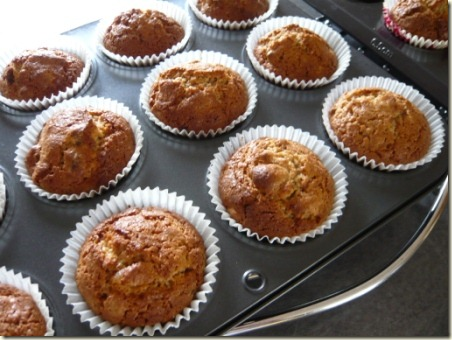 GINGER MUFFINS 6