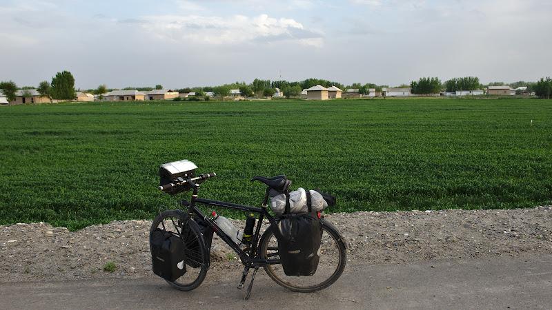 Verdele ce domneste pe masura ce se apropie Samarkand.