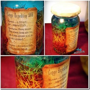 andy skinner specimen jars page 1