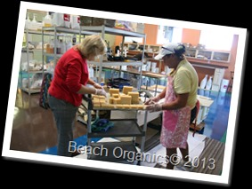 Beach Organics Behind the scenes