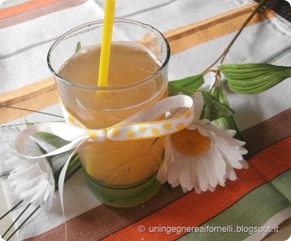 succo frutta homemade casalingo fruit juice pere pesche susine banana kiwi mele apple pear peach apricot plum marmellata
