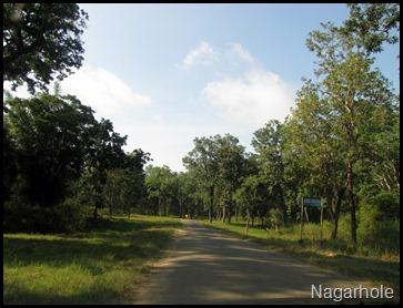 Nagarhole