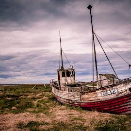 Hvalsnes Abandoned Boat by David Long - Transportation Boats ( iceland, abrandoned boat, hvalsnes )