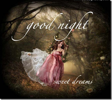 Top 10 Good Night SMS In Hindi With Shayari