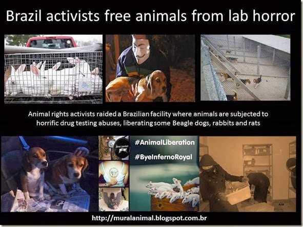 Brazil activists free animals from lab horror
