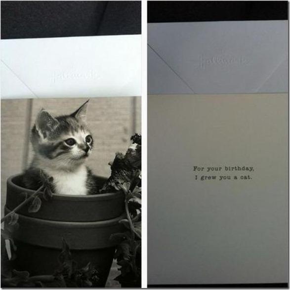 funny-birthday-cards-5