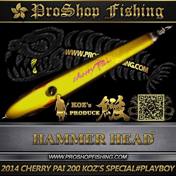 2014 CHERRY PAI 200 KOZ'S SPECIAL #PB (4)_thumb