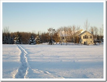 20120115_sunny-winter-day_014