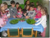 επίσκεψη στο λαχανόκηπό μας (4)