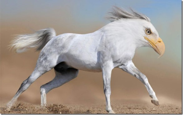 photoshop-animals-pixels-3