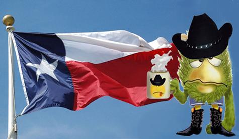 PolitiJimTexas-flag