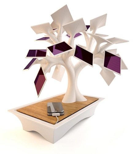 bonsai-solar-energia-solar