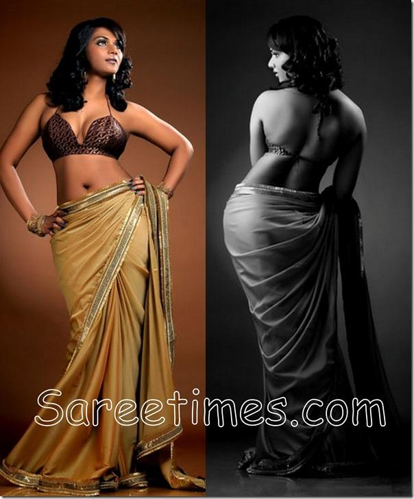 Anu_Varma_Designer_Saree