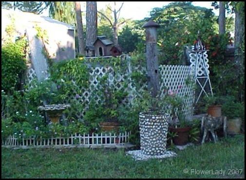 12-03-back-garden