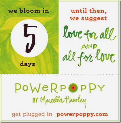 PP_Countdown_BlogPost_5DaysB