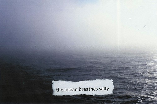 the_ocean_breathes_salty_inspiring_photography_quote_quote