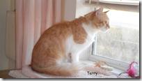 Terry-2013-03-06