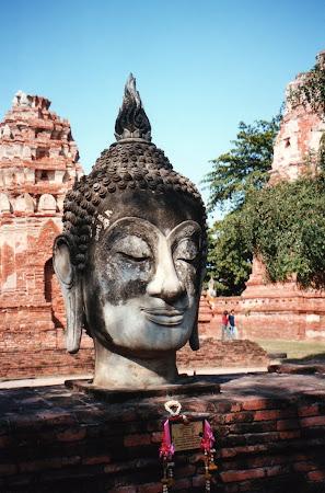 Statuie Ayutthaya: capul lui Buddha