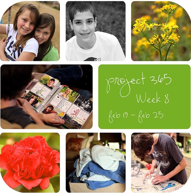 4week8