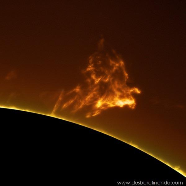 hd-photographs-of-the-sun-alan-friedmans- (5)