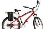 bike easy rider caloi