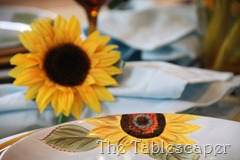 sunflowers 013