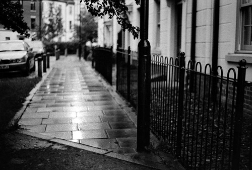 Wet-Pavements---Film
