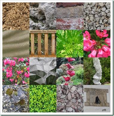 leics botanic gardens bh may 20143