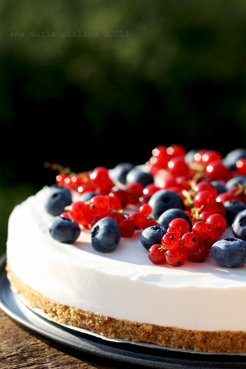 cheesecake cu iaurt si fructe de padure wtr